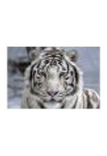 Painel Adesivo De Parede - Tigre Branco - Animais - 1670Pnp
