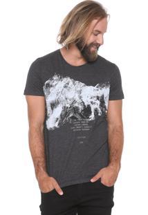 Camiseta Triton Estampada Grafite