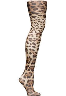 Dolce & Gabbana Meia-Calça Com Animal Print - Marrom