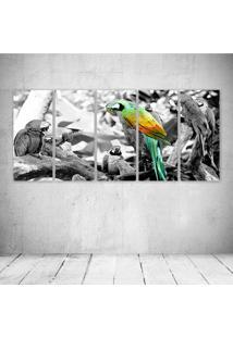 Quadro Decorativo - Arara - Composto De 5 Quadros - Multicolorido - Dafiti