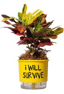 Vaso Autoirrigável I Will Survive Amarelo