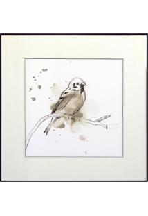 Quadro Decorativo Bird Study Ii