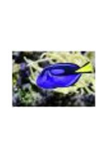 Painel Adesivo De Parede - Blue Tang - 070Pn-P