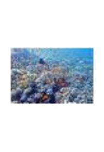 Painel Adesivo De Parede - Coral - 467Pn-M