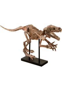 Escultura Decorativa De Resina Esqueleto T-Rex