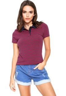 Camisa Polo Hering Listrada Rosa/Azul-Marinho