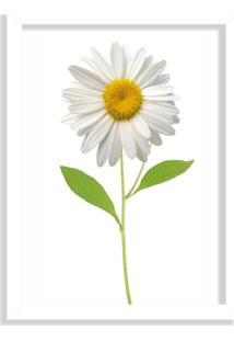 Quadro Decorativo Flor Margarida Branco - Médio