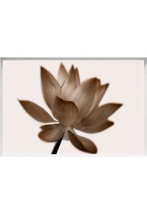 Quadro Decorativo Flor- Branco & Marrom- 40X60Cmarte Prã³Pria
