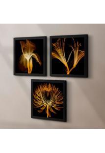 Conjunto Com 3 Quadros Decorativos Raio-X Flores Preto 30 Cm