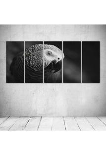 Quadro Decorativo - Curious Parrot - Composto De 5 Quadros