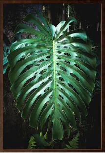 Quadro Decorativo Folhas- Preto & Verde- 80X60Cmarte Prã³Pria