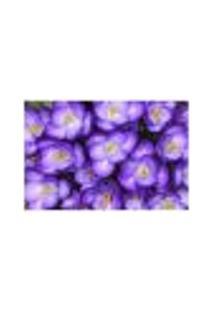 Painel Adesivo De Parede - Violetas - 124Pn-M