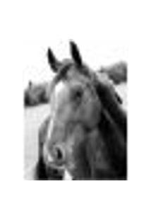 Painel Adesivo De Parede - Cavalo - 089Pn-G