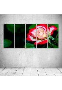Quadro Decorativo - A Delicate Rose - Composto De 5 Quadros