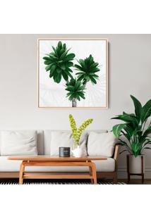 Quadro 70X70Cm Folhas Tropicais Plumeria Canvas Em Moldura Flutuante Filete