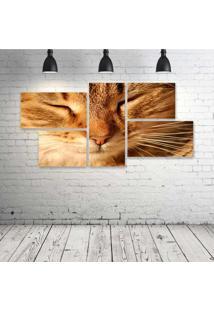 Quadro Decorativo - Gato-Fofo - Composto De 5 Quadros