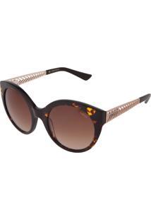 Óculos De Sol Colcci Tartaruga Redondo Marrom