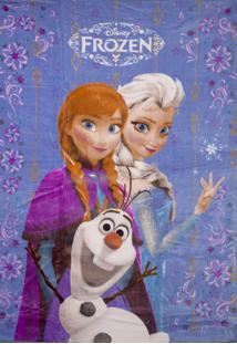 Cobertor Solteiro Jolitex Raschel Juvenil Frozen Azul