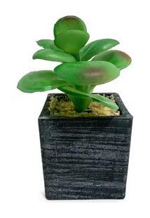 Vaso Com Suculenta Artificial Jade - Único