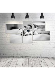 Quadro Decorativo - Cat-Lovely-(2) - Composto De 5 Quadros
