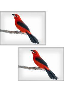 Jogo Americano Colours Creative Photo Decor - Passarinho Vermelho - 2 Peças
