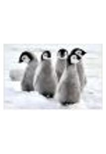 Painel Adesivo De Parede - Pinguim - Animais - 1698Png