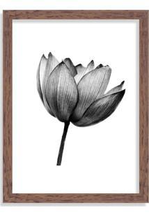 Quadro Decorativo Flor De Lotus Black And White Madeira - Médio