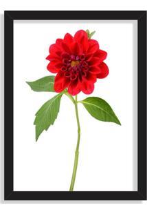 Quadro Decorativo Peônia Flor Vermelha Preto - Grande