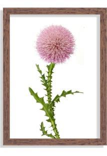 Quadro Decorativo Flor Cartamo Madeira - Médio