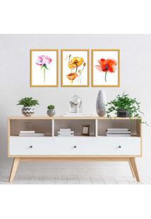Kit 3 Quadros Com Moldura Dourada Flowers Colorful