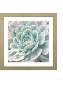 Quadro Decorativo My Garden Ii 33X33Cm Zebrano Infinity