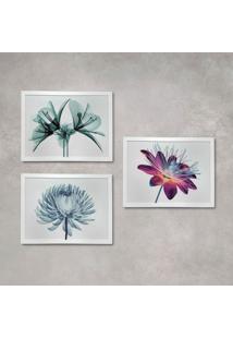 Conjunto Com 3 Quadros Decorativos Raio-X Flores Branco 40 Cm