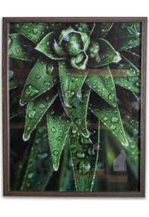 Quadro Tropically Green 2 50X40Cm