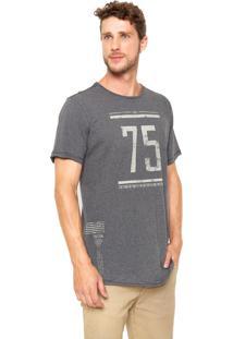 Camiseta Triton Estampada Cinza