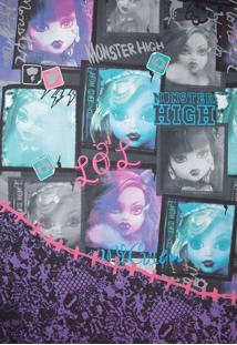 Colcha Lepper Monster High Roxa
