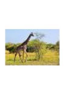 Painel Adesivo De Parede - Girafa - 652Pnm