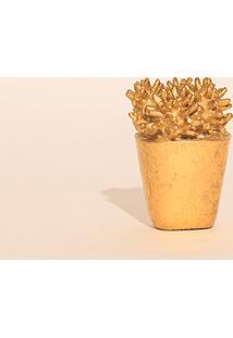 Vaso Capim Dourado