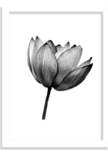 Quadro Decorativo Flor De Lotus Black And White Branco - Médio