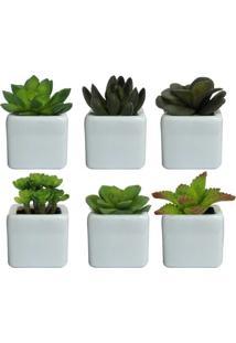 Vaso Decorativo Branco Planta Suculenta Sortida Verde 8Cm Com 6 Unidades