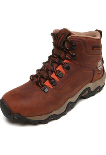 Bota Timberland Black Forest Wp W Brown