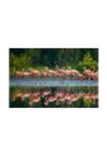 Painel Adesivo De Parede - Flamingos - Animais - 1694Png