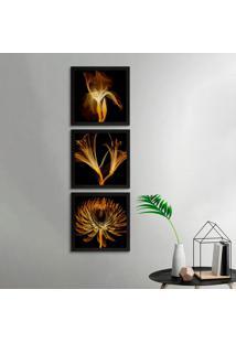 Conjunto Com 3 Quadros Decorativos Raio-X Flores Preto 20 Cm