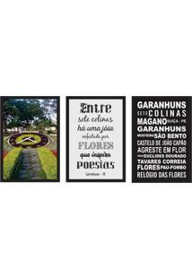 Conjunto Com 3 Quadros Decorativos Garanhus Colorido