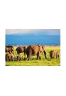 Painel Adesivo De Parede - Elefantes - 657Pnm
