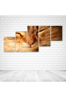 Quadro Decorativo - Gato Fofo - Composto De 5 Quadros