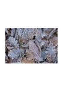 Painel Adesivo De Parede - Folhas - Inverno - 1273Pnm
