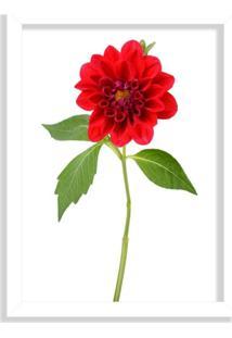 Quadro Decorativo Peônia Flor Vermelha Branco - Médio