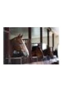 Painel Adesivo De Parede - Cavalos - 806Pnp