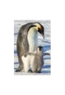 Painel Adesivo De Parede - Pinguim - Animais - 1840Pnp