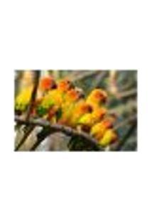 Painel Adesivo De Parede - Passarinhos - 034Pn-G
